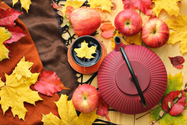 落ち葉と茶器